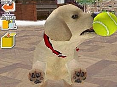 Nintendo DS Screenshot Nintendogs